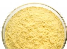 Corn Germ from Bulgaria