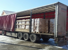 Sunflower seeds Exporting from Bulgaria