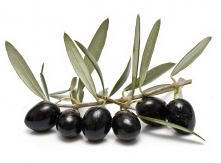 Aceitunas Torrent (Black Olives)