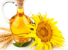 Best Quality Oil from Bulgarian Sunflower